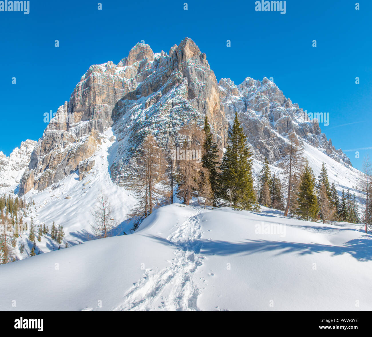 Imposing mountain wall in the Italian Alps, snowcapped mountains, fresh tracks in the snow leading to the forest. Winter snowshoeing. - Stock Image