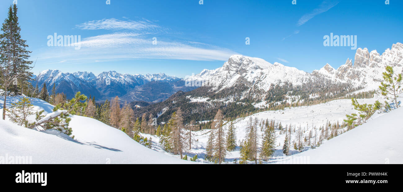 Panoramic view of Agordo and the valley, snowshoeing in a perfect winter day. Fresh snow, pine trees, forest, cloudless sky. - Stock Image