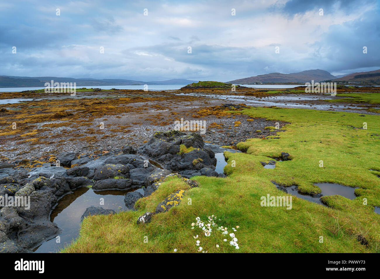 On the shores of the Sound of Mull near Salen on the Isle of Mull in Scotland - Stock Image