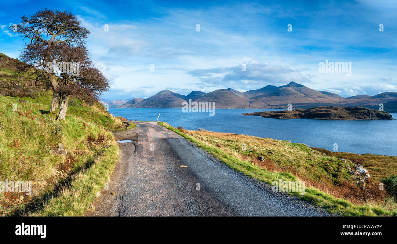 A single track road winds it's way past a lonely tree alongside Loch Na Keal and the tiny Isle of Eorsa on the Isle of Mull in Scotland - Stock Image