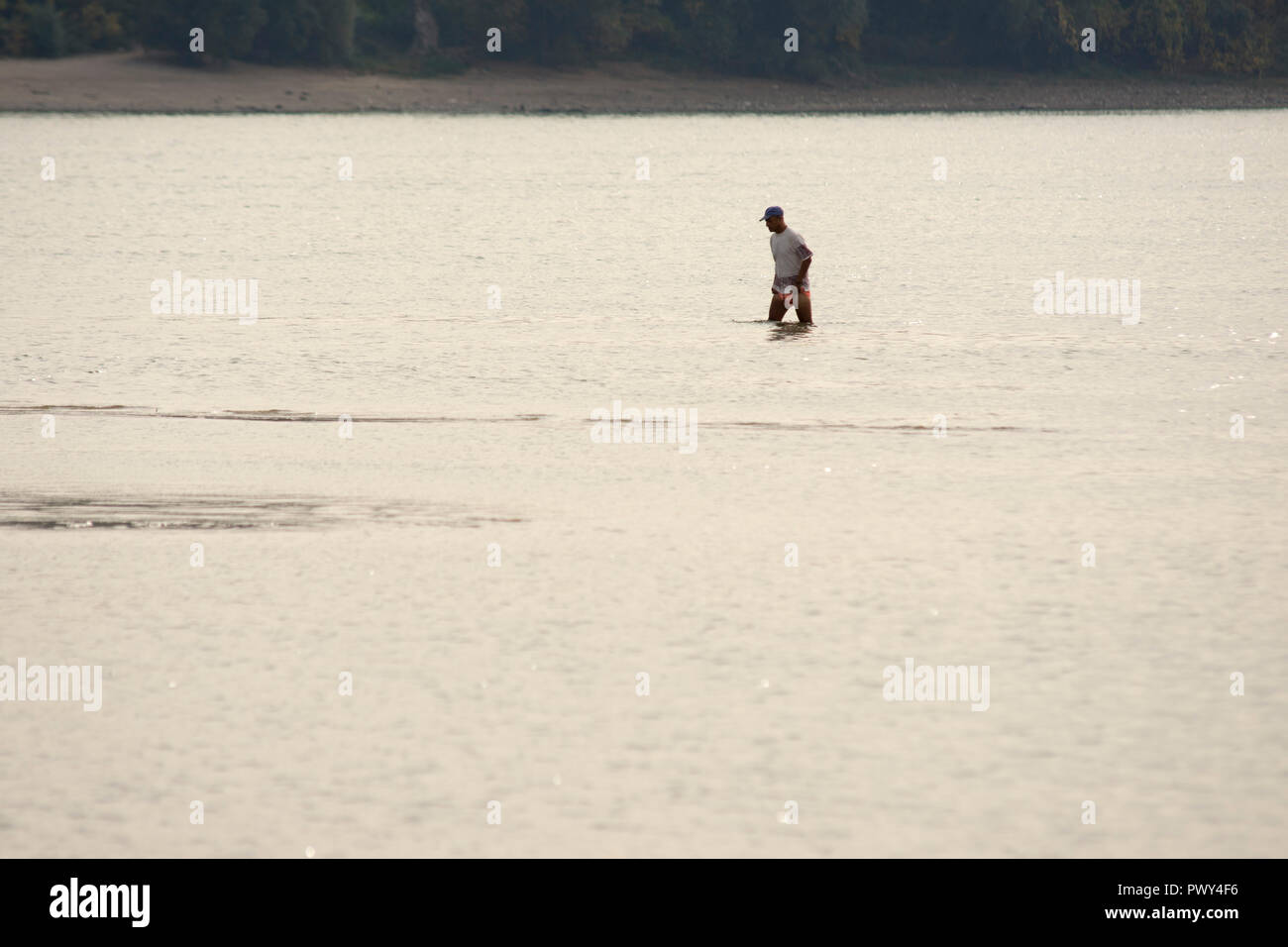 Novi Sad, Serbia 18 October 2018 The very low water level of the Danube river made sandbanks near city of Novi Sad in Serbia Credit: Nenad Mihajlovic/Alamy Live News - Stock Image