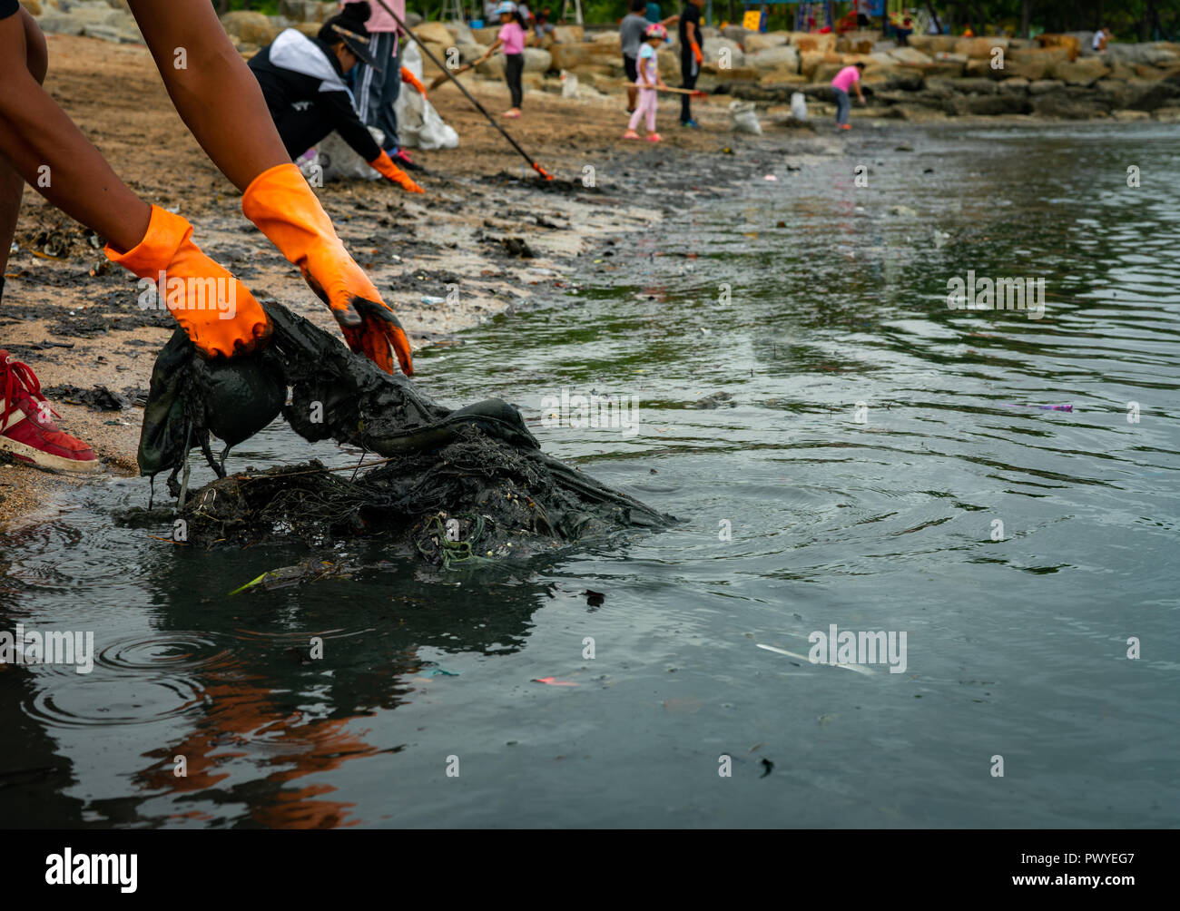 Volunteers wear orange rubber gloves to collect garbage on the beach. Beach environment pollution. Volunteers cleaning the sand. Tidying up rubbish on - Stock Image