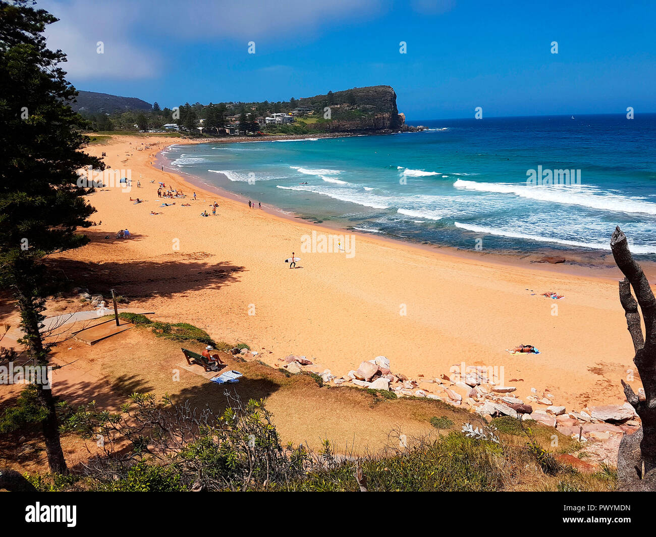 Impressionen: Palm beach, Sydney, Australia . - Stock Image