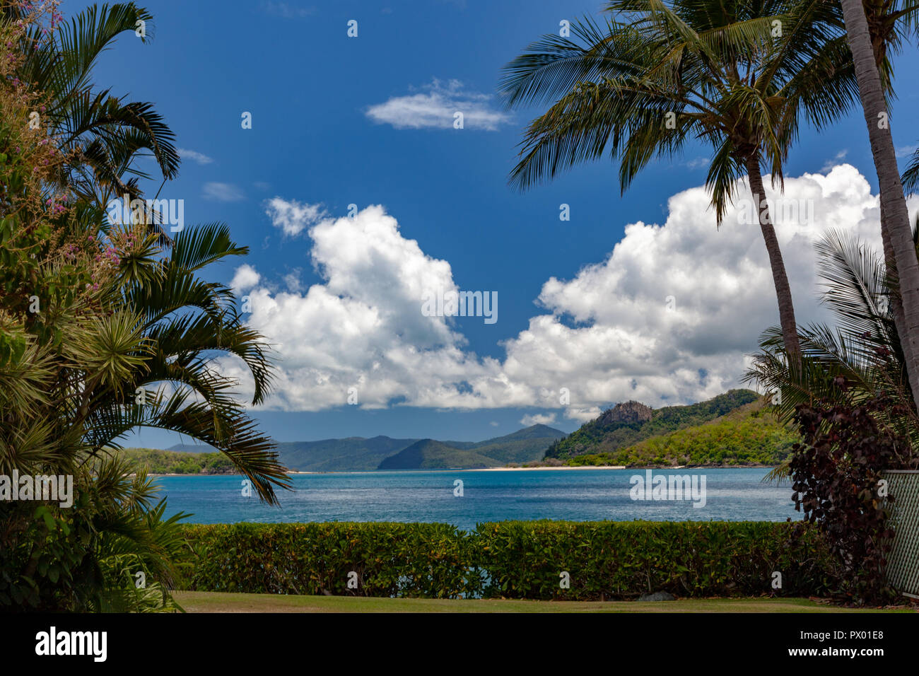 Blue skies, white fluffy clouds, palm trees, aqua, azure, yellow and bottle-green waters lapping the white coral sands of the Great Barrier Reef - Stock Image