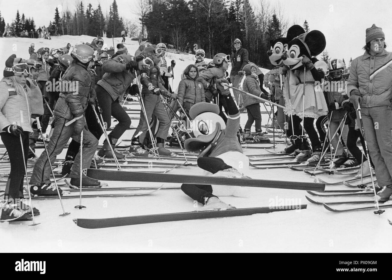Downhill skiing 1970s. Donald Duck, Mickey and Minnie Mouse are hosting a childrens downhill skiing event 1976. Sweden - Stock Image