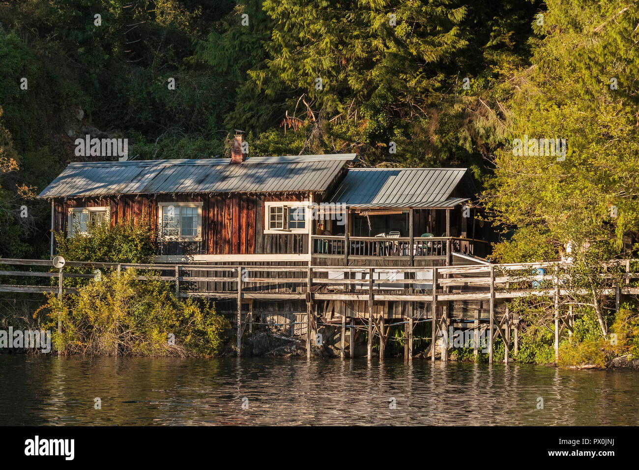 On a quiet summer evening in coastal British Columbia, golden light and shadows fall on the forest and a wooden house and boardwalk beside the water. - Stock Image