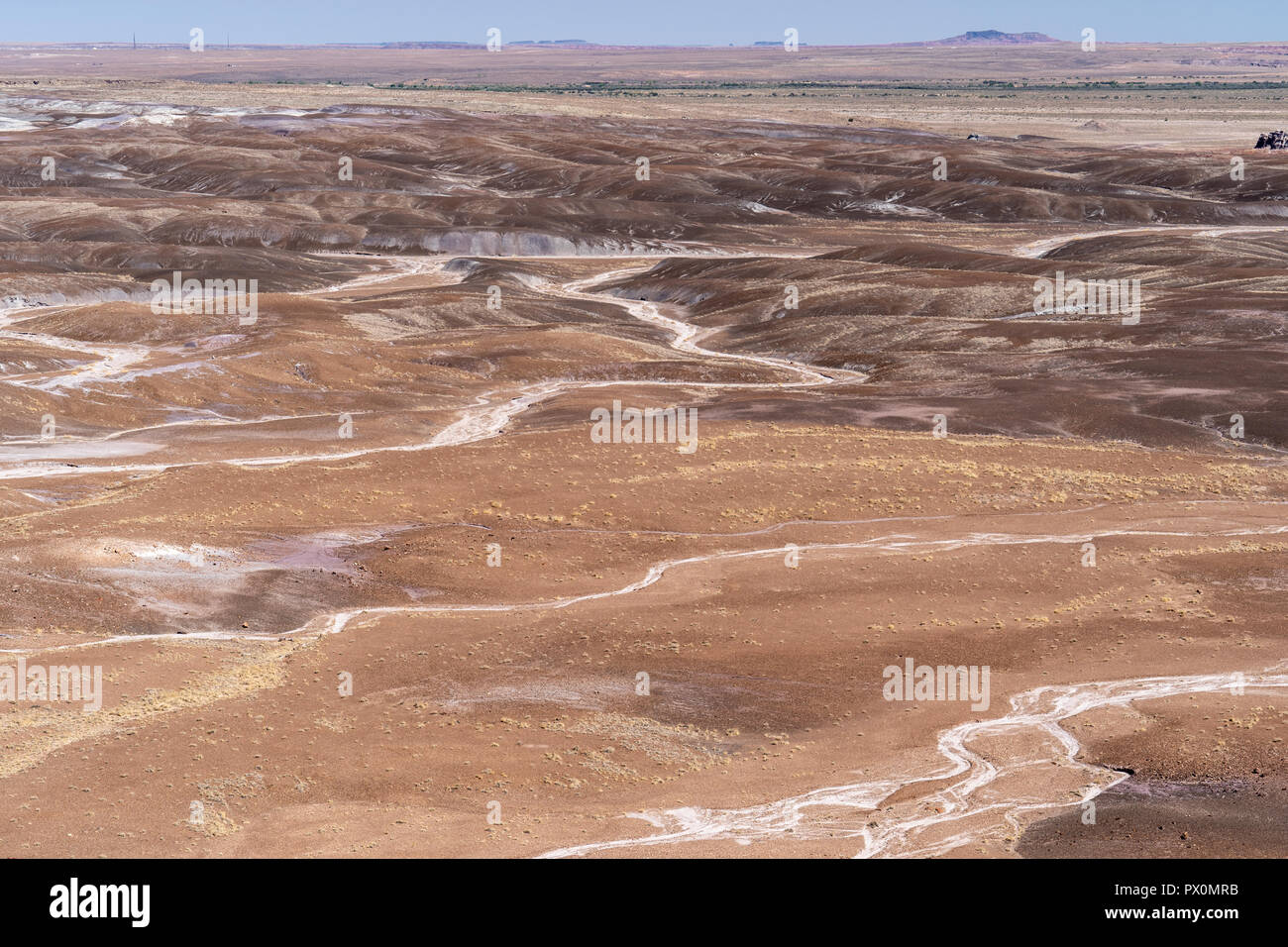 Beautiful vast desert landscape of the Blue Mesa area of Petrified Forest National Park in Arizona USA - Stock Image
