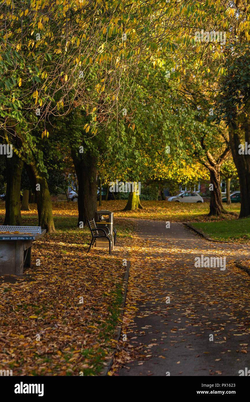 Autumn in Chapel Allerton Park, Leeds - Stock Image