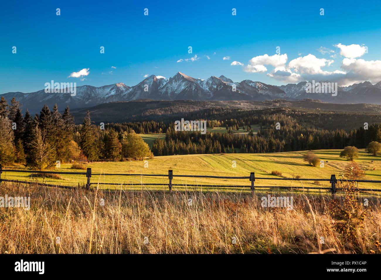 Scenic Tatra Mountains close up from village located in Pieniny region, Poland - Stock Image