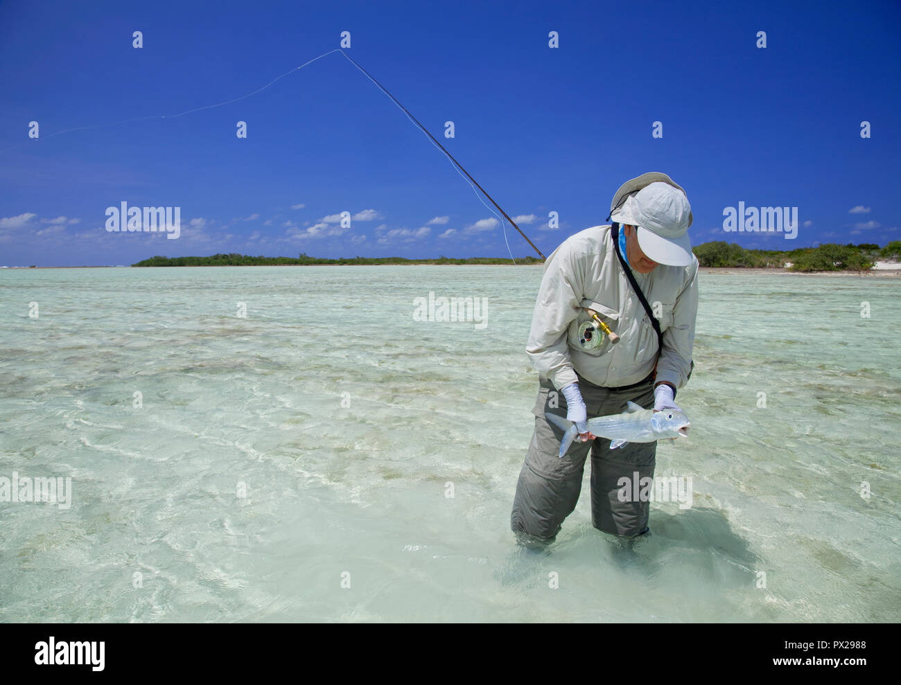 Fly fishing for bonefish in the Bahamas - Stock Image