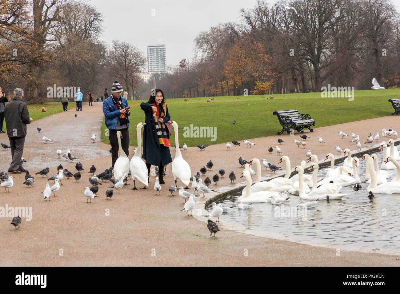 Feeding birds in Kensington Gardens, London - Stock Image