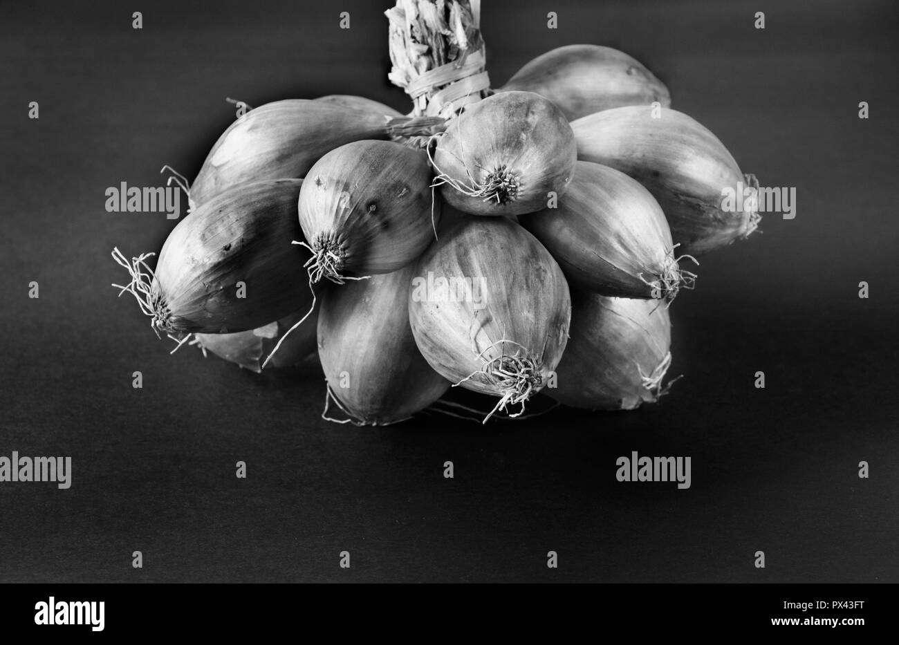 A fantastic bunch of shallots , black and white photography ,high contrast , dark background , studio shot , front view - Stock Image