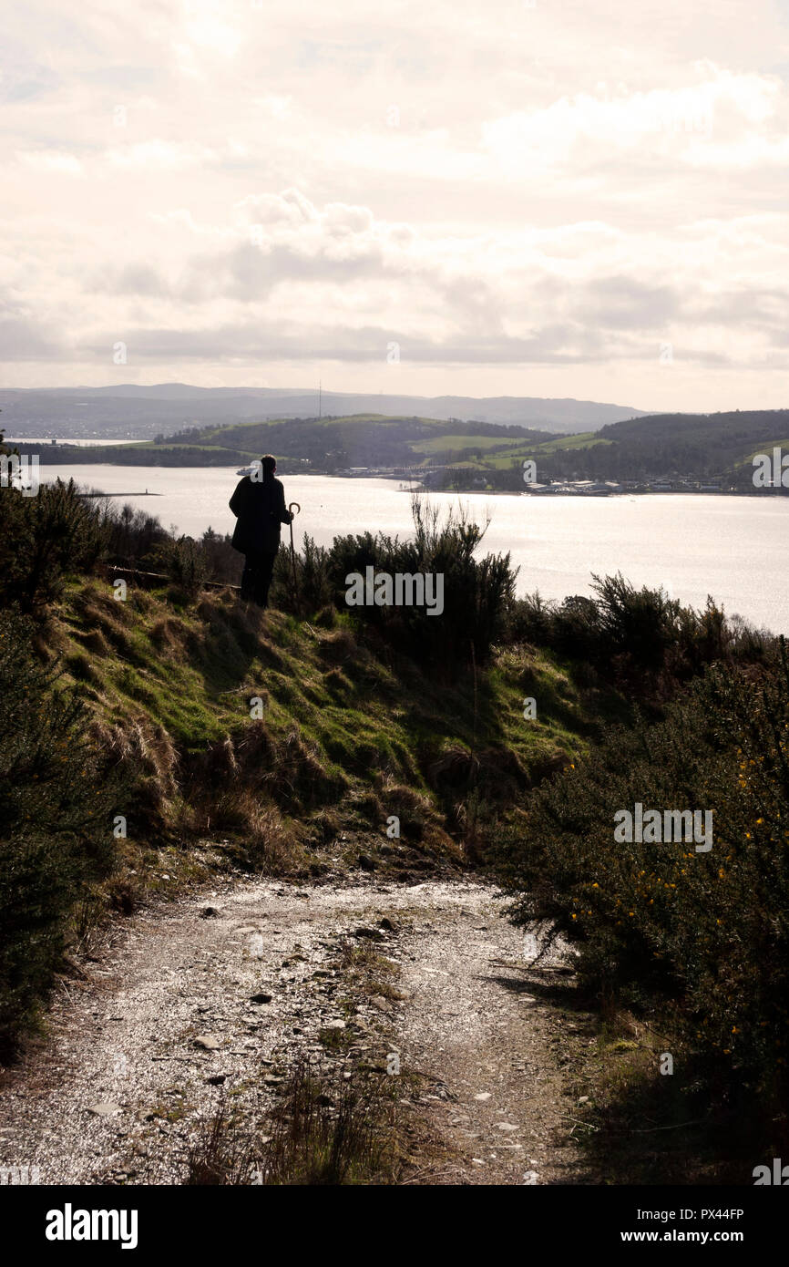 Farmer looking down over the Gareloch to the Clyde Estuary. Looking along the farm track. - Stock Image