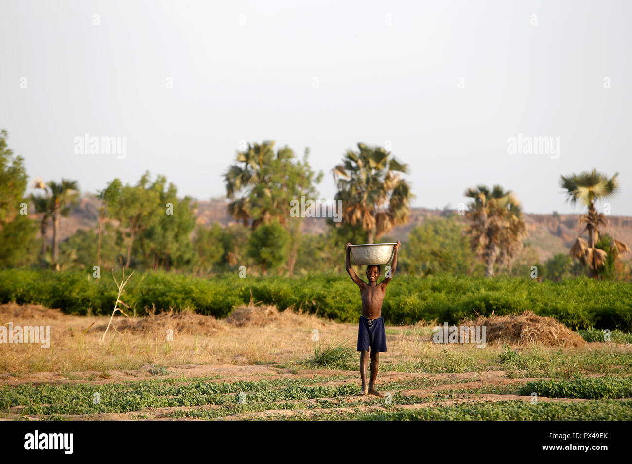 Togolese boy carrying water for irrigation in Karsome, Togo. - Stock Image