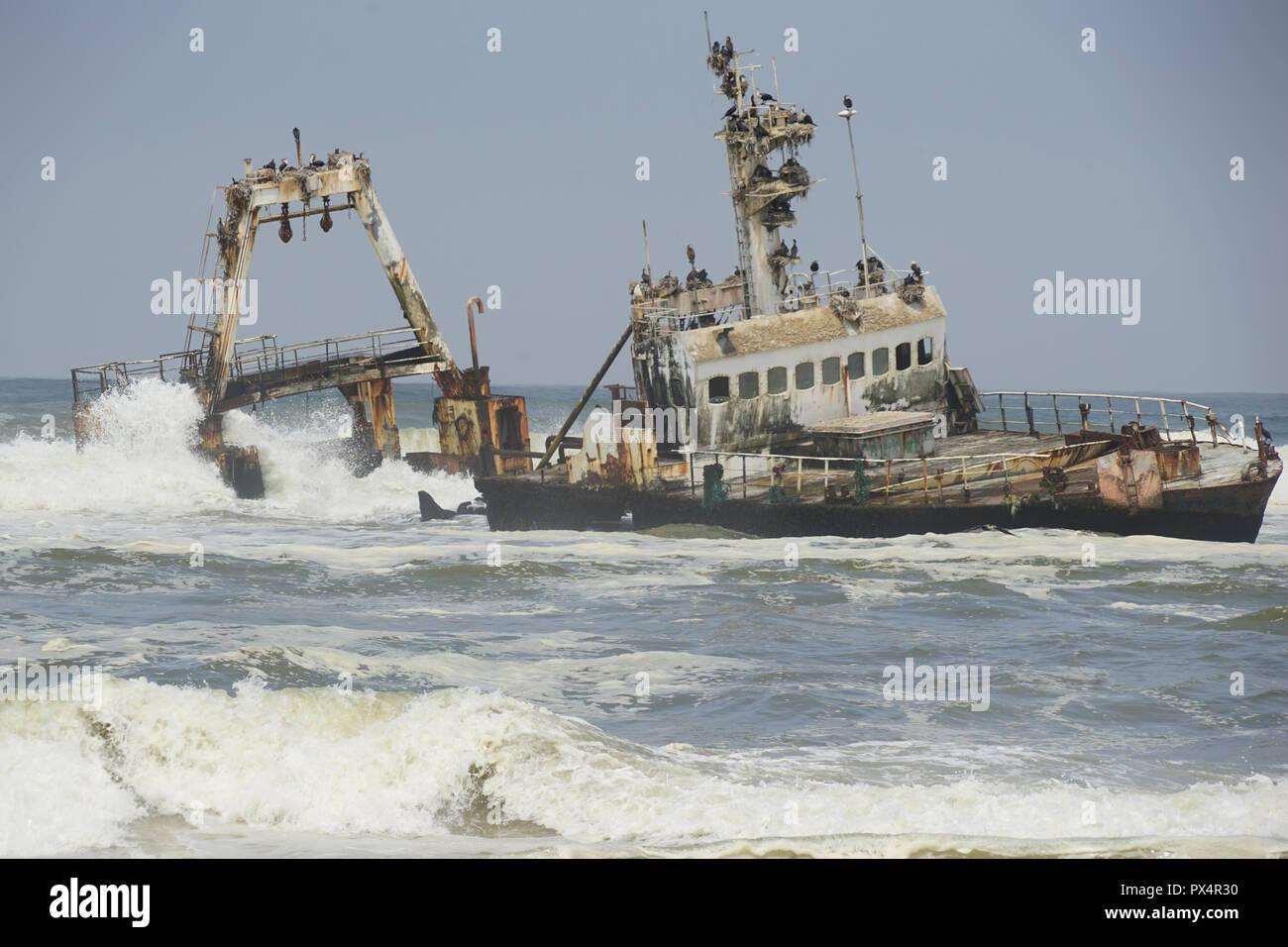 Gestrandeter Fischtrawler 'Zeila' bei Henties Bay, Skelettküste, Nester des Weißbrustkormoran  Dorob National Park, Atlantischer Ozean, Namibia - Stock Image