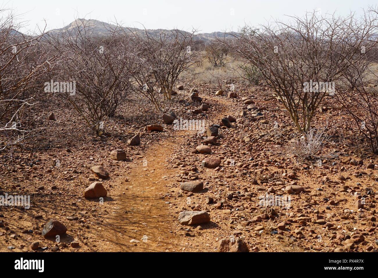 Weg zu Phillips Cave, Ameib Farm,  Erongogebirge, Namibia, Afrika Stock Photo