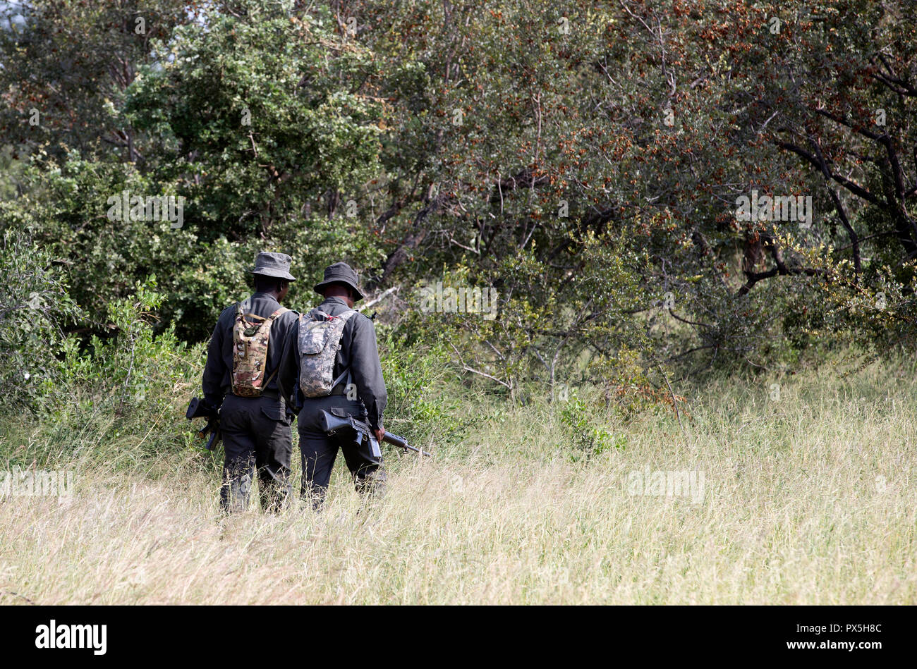 South African anti-poaching task team on patrol.  South Africa. - Stock Image