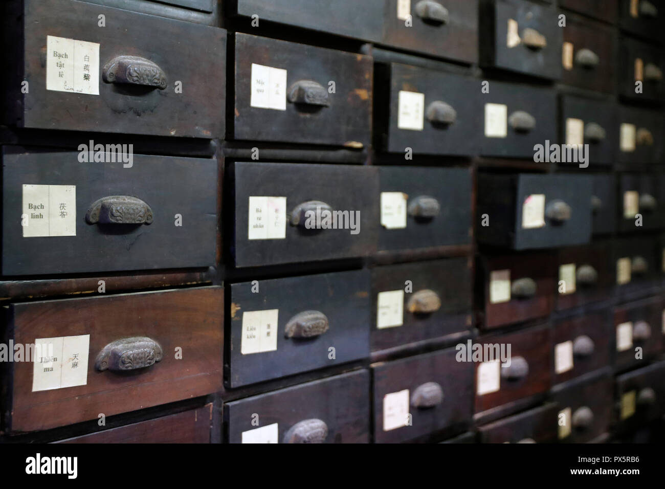 Museum of Traditional Vietnamese Medicine.  Pharmacy.  Wooden drawers for medicines.  Ho Chi Minh City. Vietnam. - Stock Image