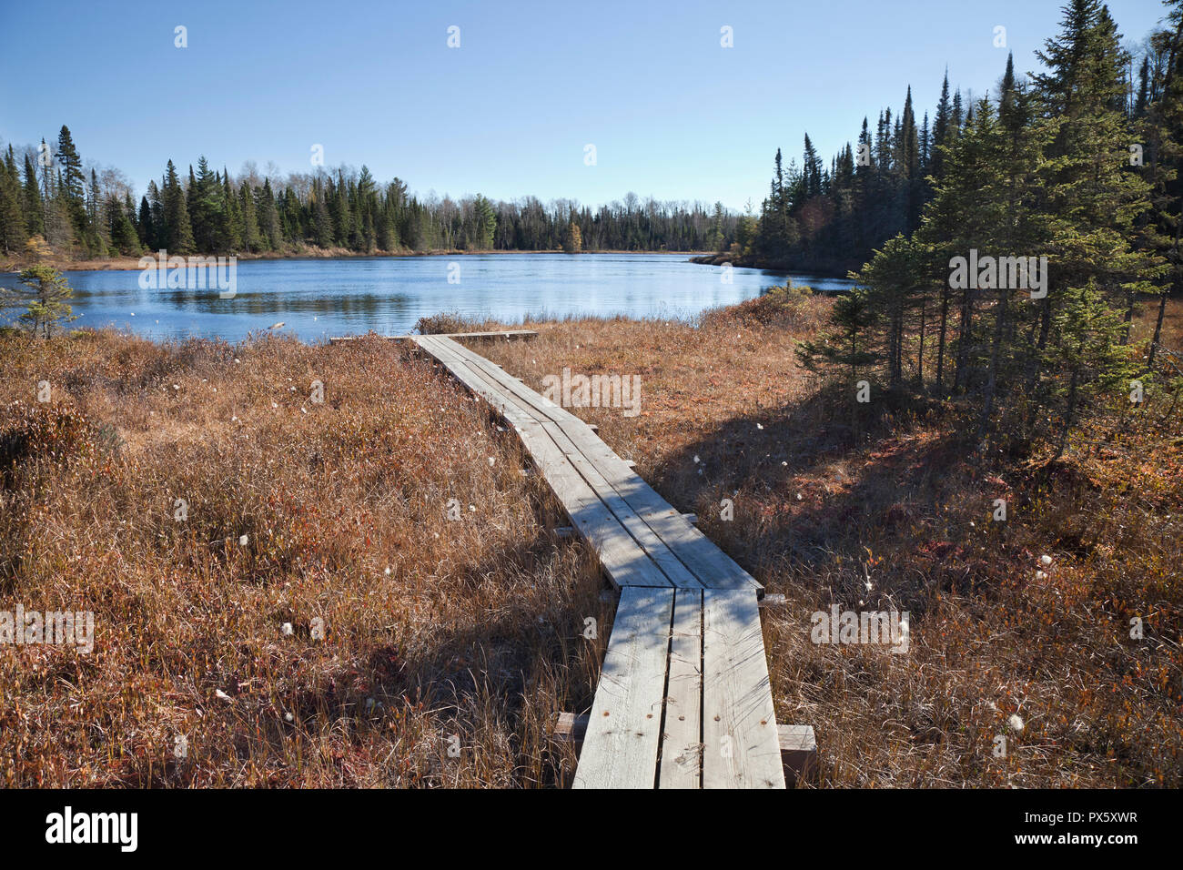 Lake Of The Woods Minnesota Stock Photos Lake Of The Woods