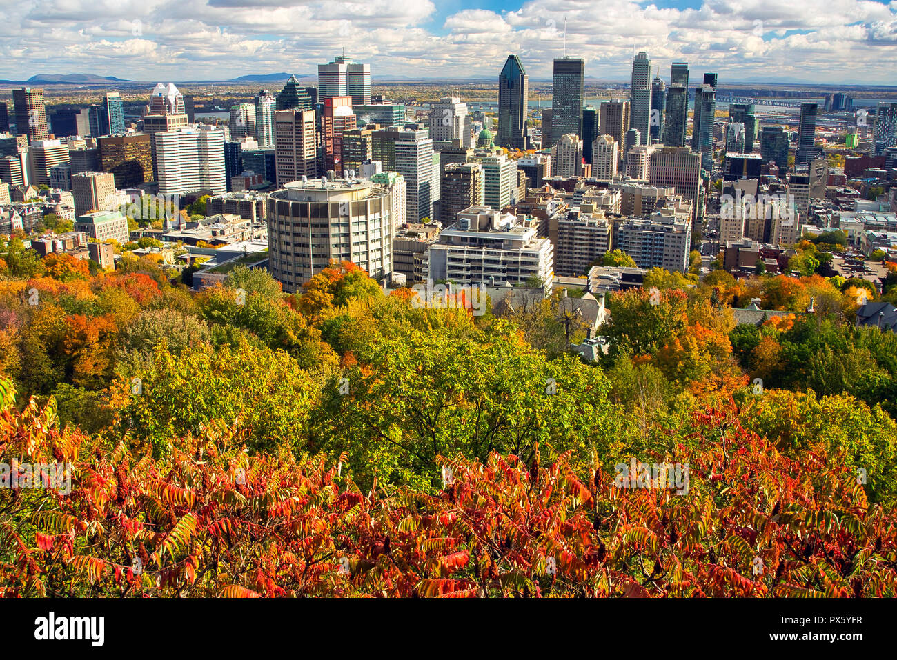 Montreal,Canada,18 October,2018.View of Montreal's skyline during autumn. Credit:Mario Beauregard/Alamy Live News - Stock Image