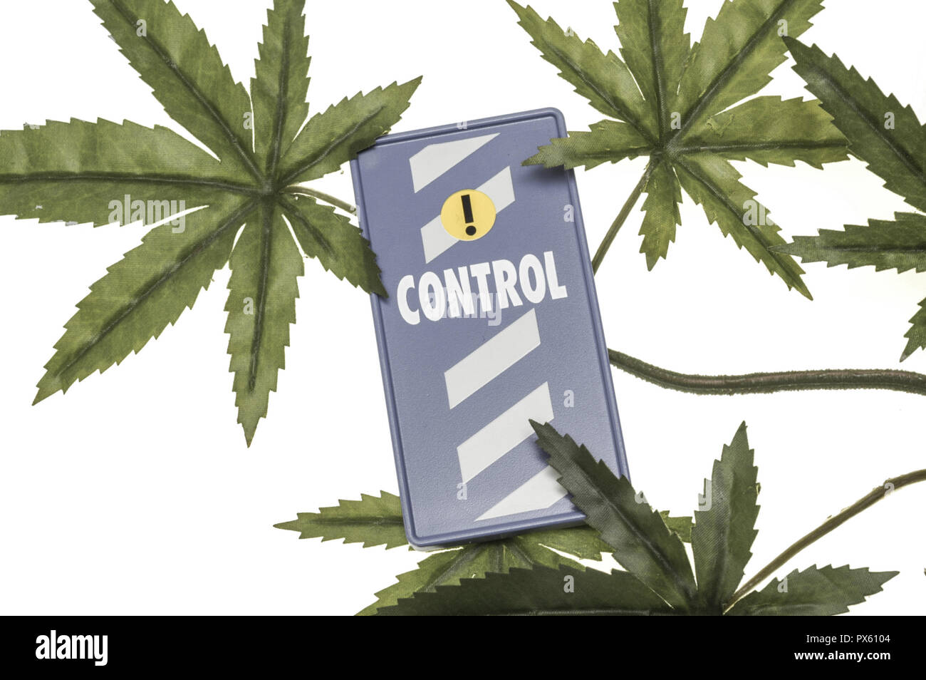 Cannabis leaves, symbol sign for state controle, legalisation, drug abuse Stock Photo