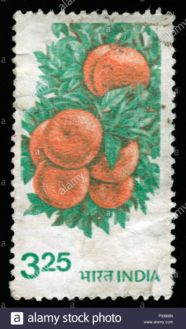Postmarked stamp from India in the Agriculture series issued in 1982 - Stock Image