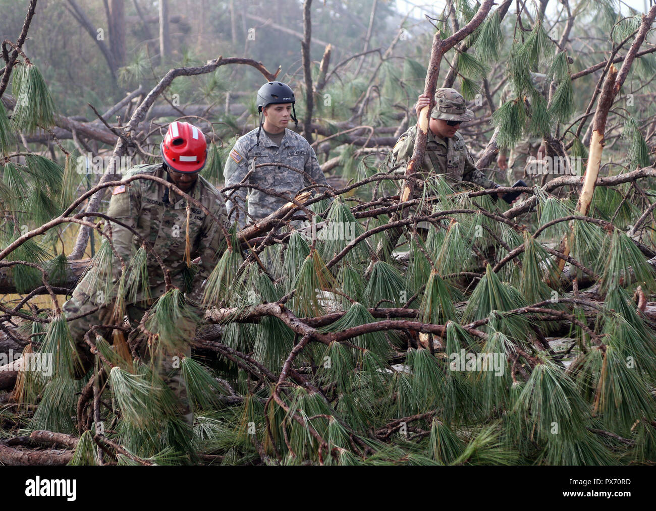 Florida National Guardsmen navigate downed trees to check on residents in the aftermath of Hurricane Michael as the storm left a swath of destruction across the Panhandle region of Florida area October 16, 2018 in Port St. Joe, Florida. The Category 4 monster storm left behind catastrophic damage along northwestern Florida. - Stock Image