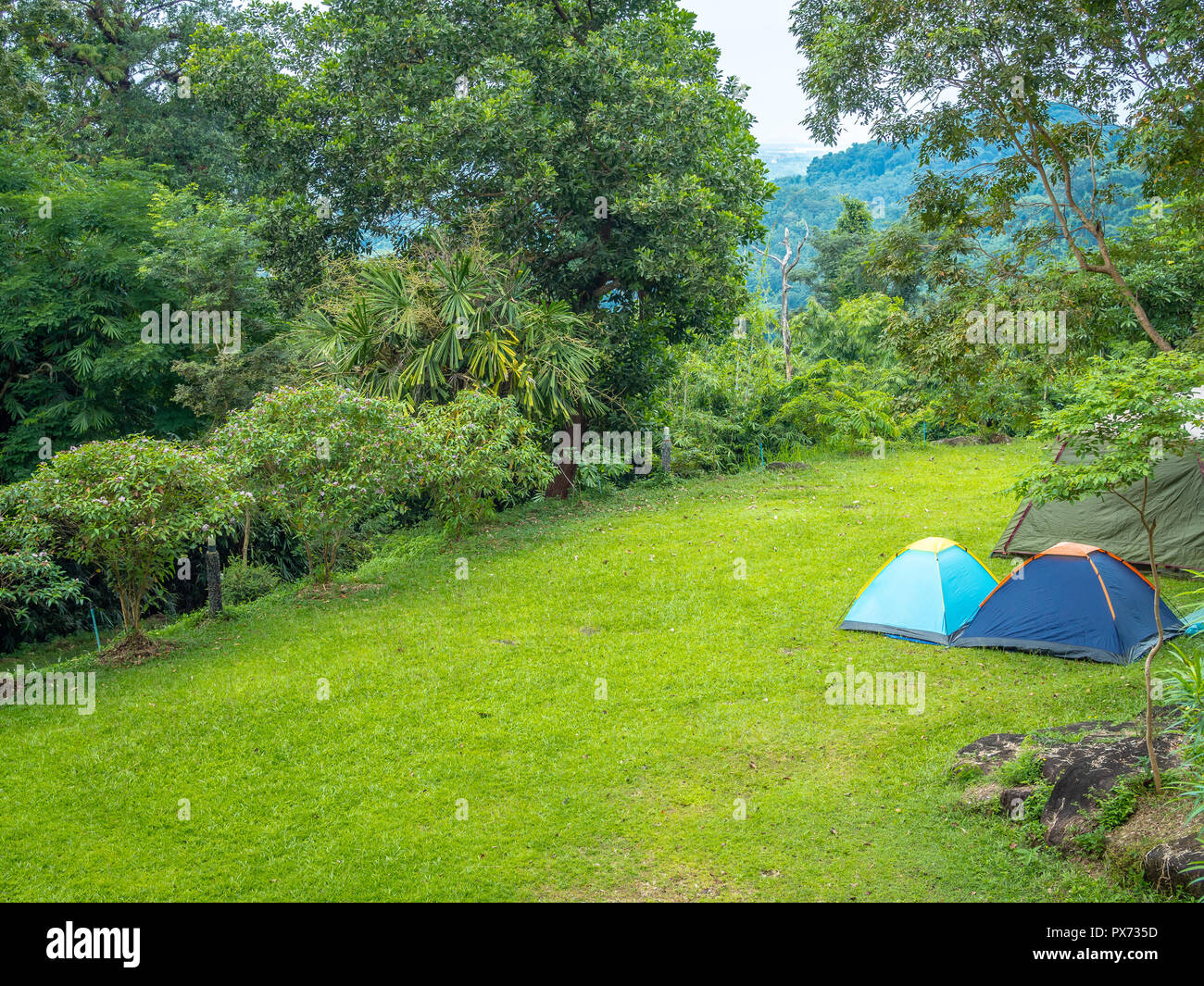Camping blue tents on green grass with the mountain and ...