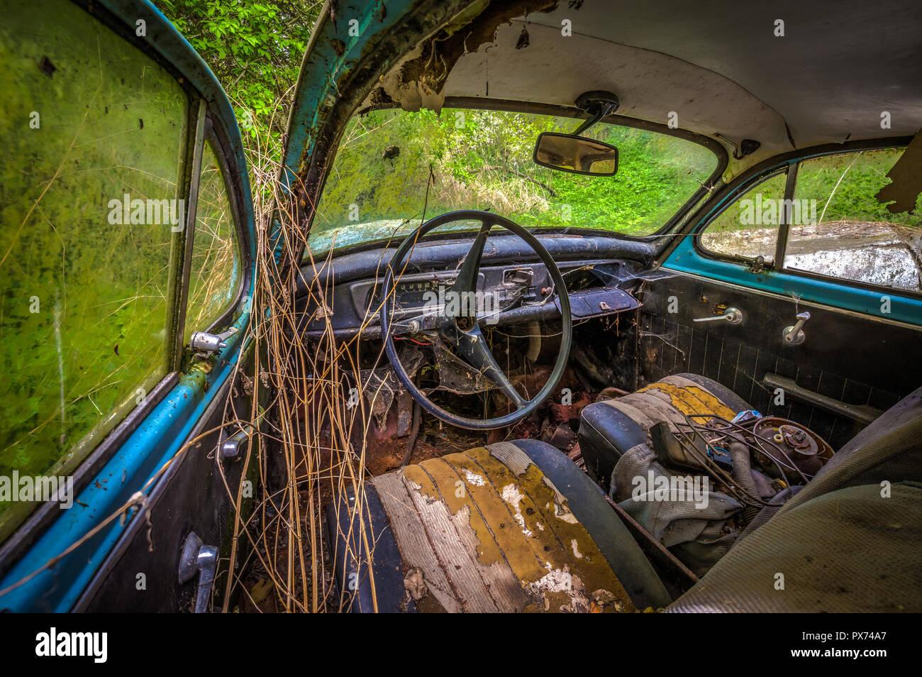 Interior of forgotten car decaying in the garden, urbex Czech republic - Stock Image