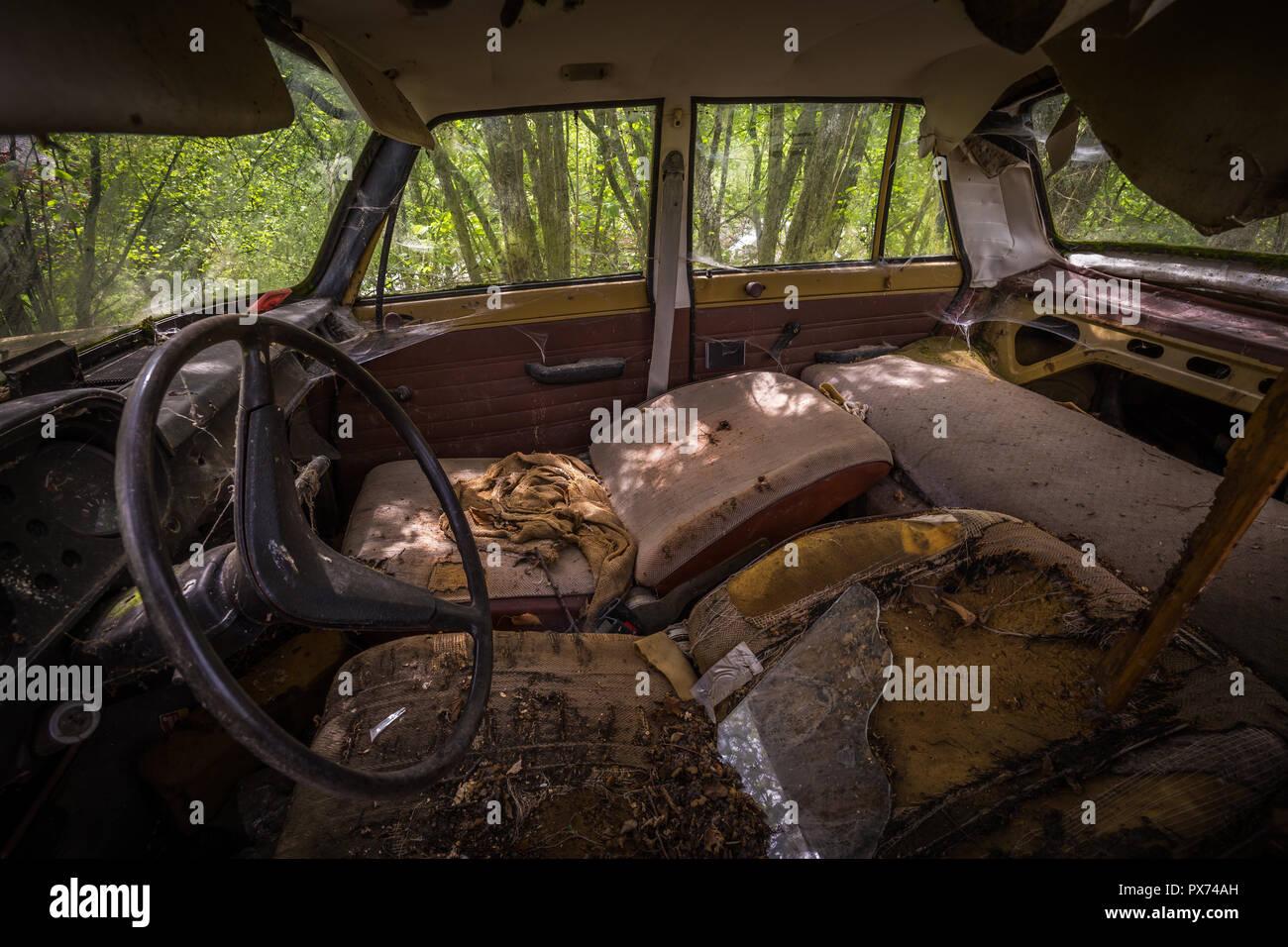 Interior of forgotten car decaying in the garden, dashboard, urbex Czech republic - Stock Image