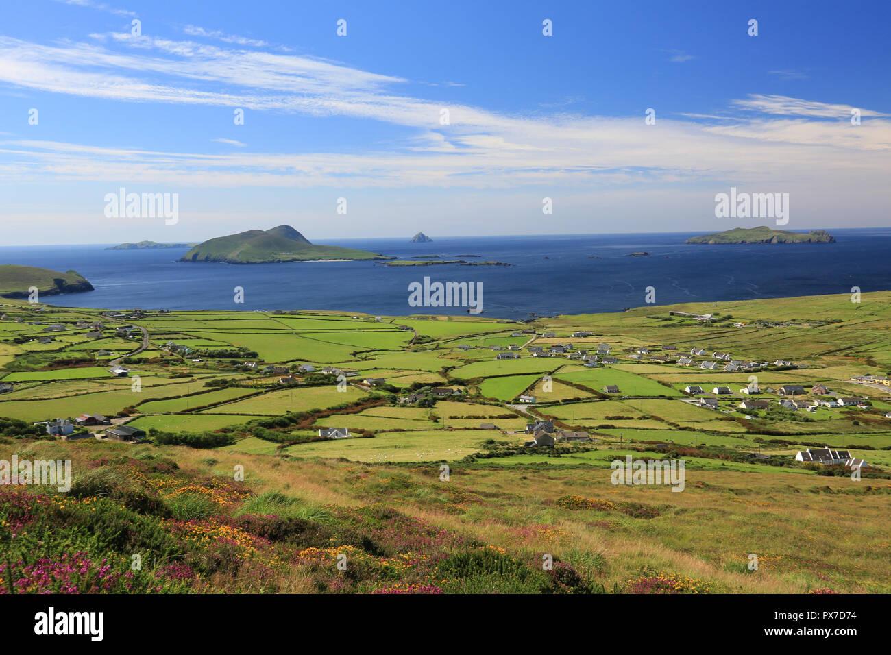 wild atlantic way, dingle peninsula, county kerry, irreland - Stock Image