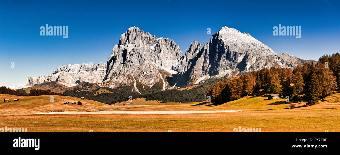 Alpe di Siusi plateau, great panorama with mountains of Sassolungo Group and clear blue sky at the horizon - Stock Image