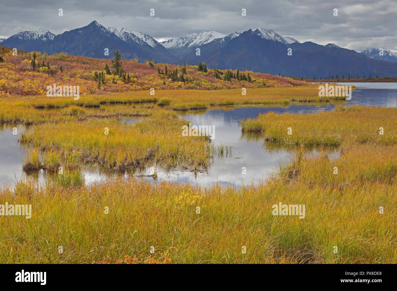 View of the Chugach Mountains in the fall from Glenn Highway Alaska - Stock Image