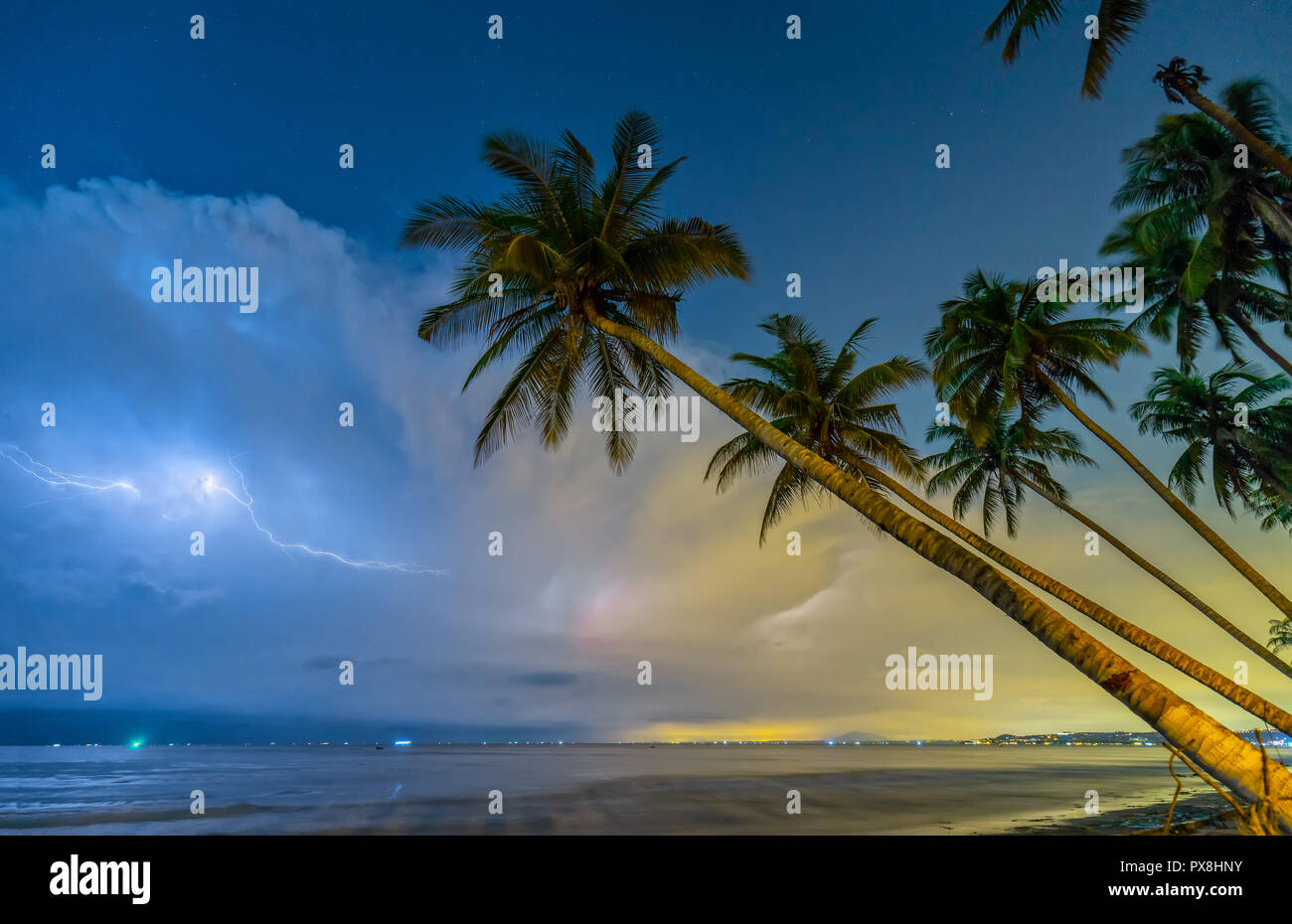 Inclined coconut trees leaning toward the tropical beach on a summer night, the horizon of the lightning bolts through the dramatic clouds - Stock Image