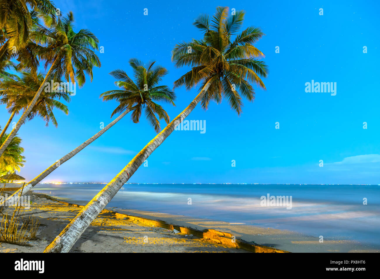 Inclined coconut trees leaning toward the tropical beach on a summer night, below are a beautiful mooring boats - Stock Image