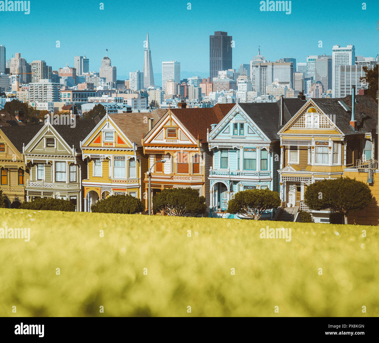 Classic postcard view of famous Painted Ladies, a row of colorful Victorian houses located at Alamo Square, with the skyline of San Francisco in the b - Stock Image