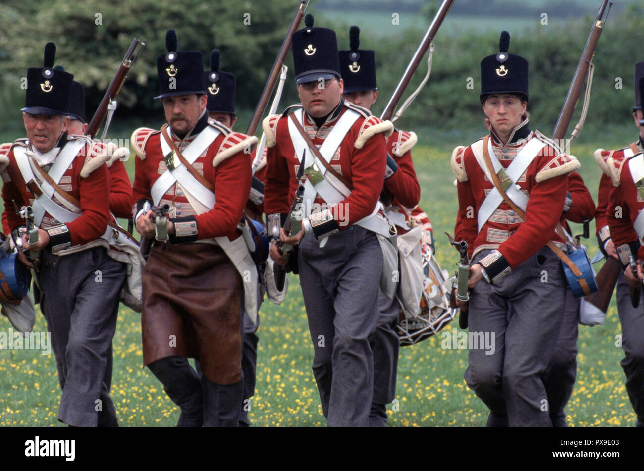 Napoleonic British Redcoats (Reenactor) - Stock Image