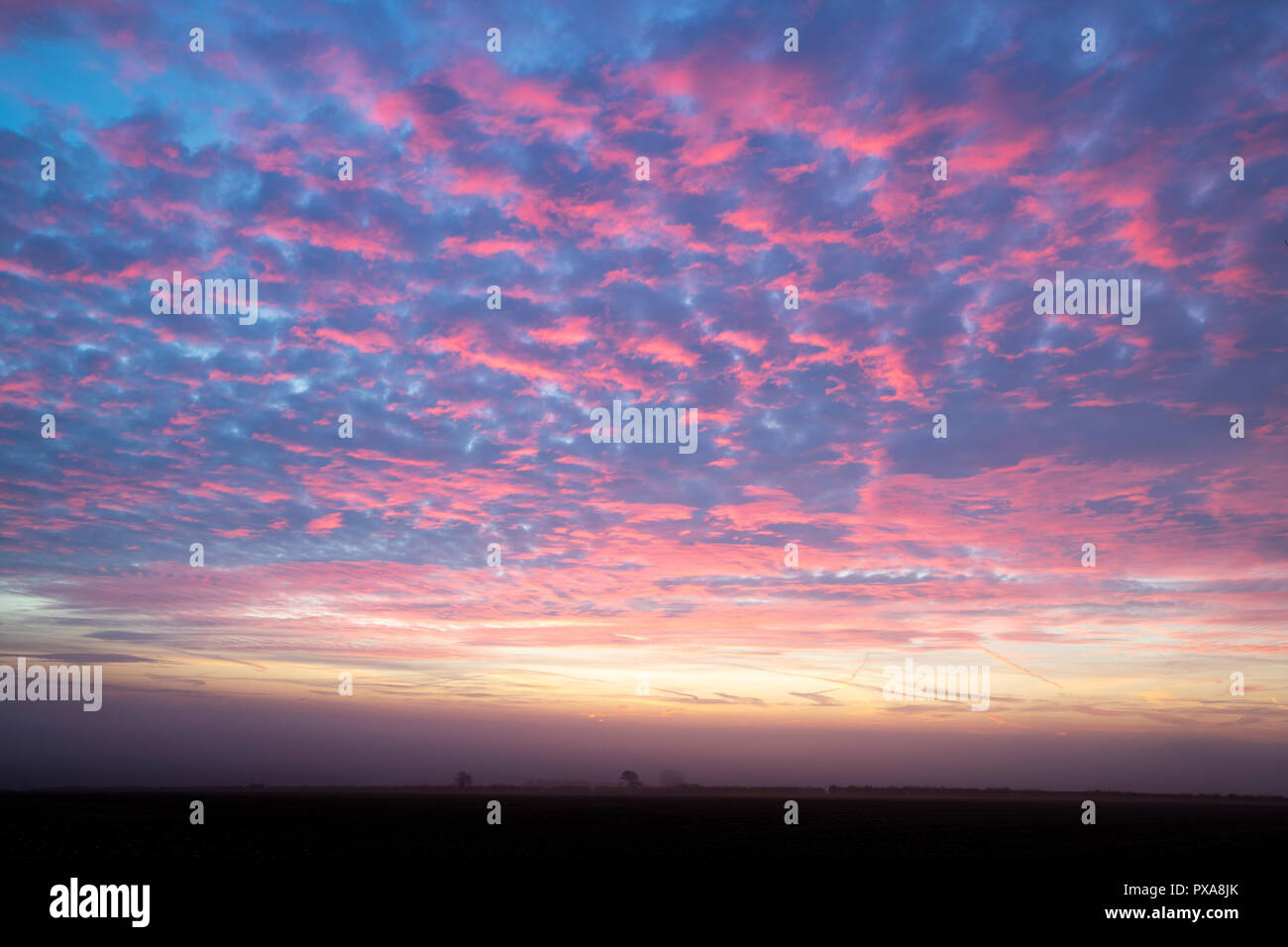 Pink cloudy sky at dawn in october in the cotswold countryside. Cotswolds, Gloucestershire, England Stock Photo