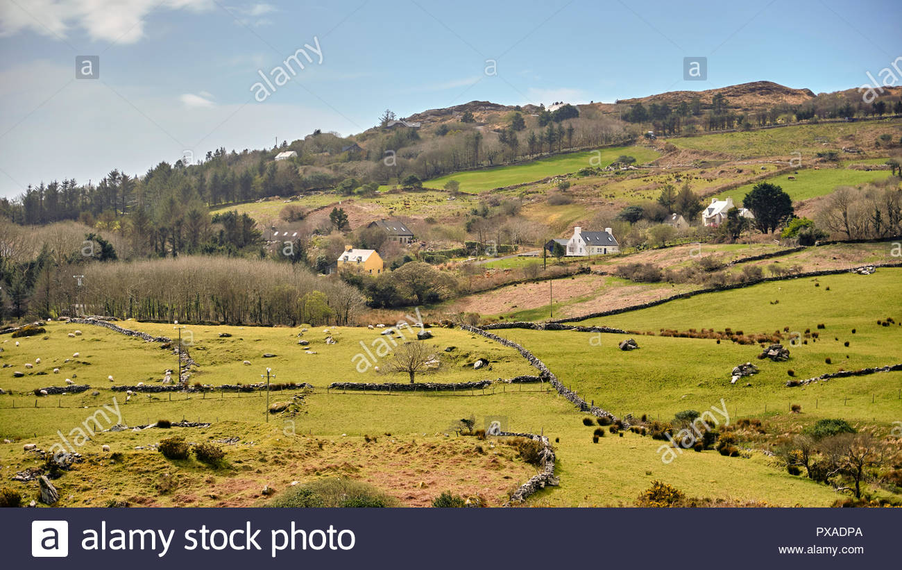 Farm lands along the Ring of Kerry, Co. kerry, Ireland, Europe, 2018 - Stock Image