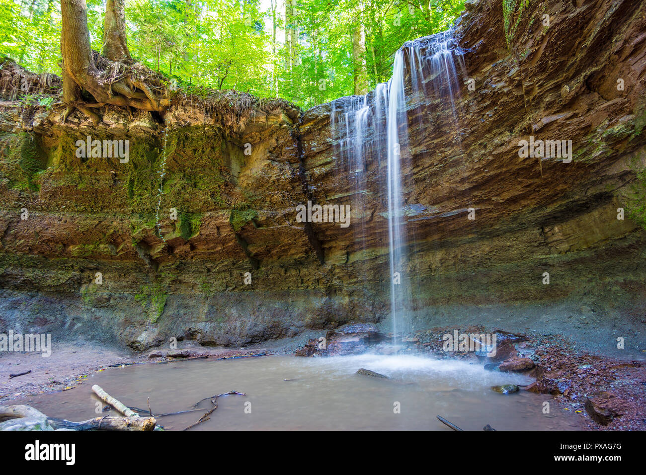 Germany, Green woodland and waterfall of Hoerschbach canyon - Stock Image
