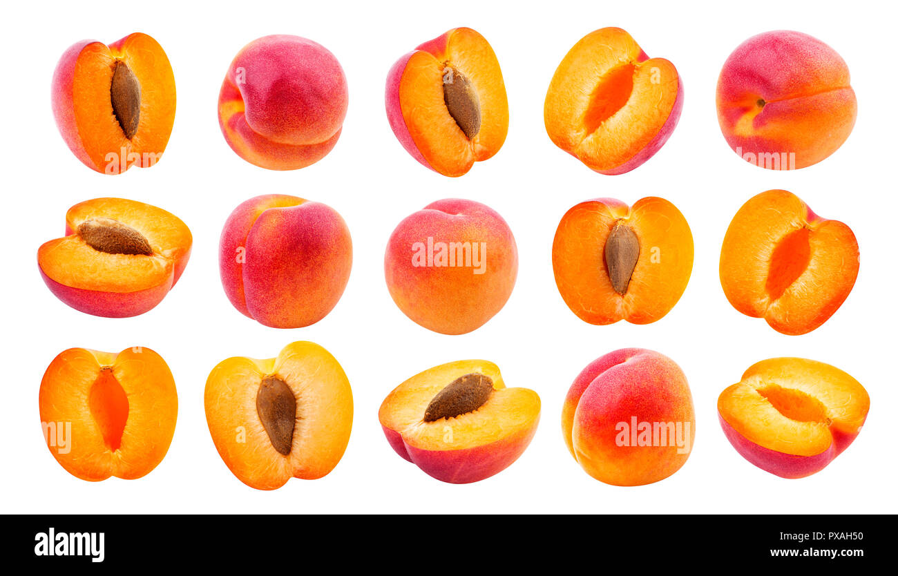 Apricot isolated. Collection of apricots isolated on white background - Stock Image