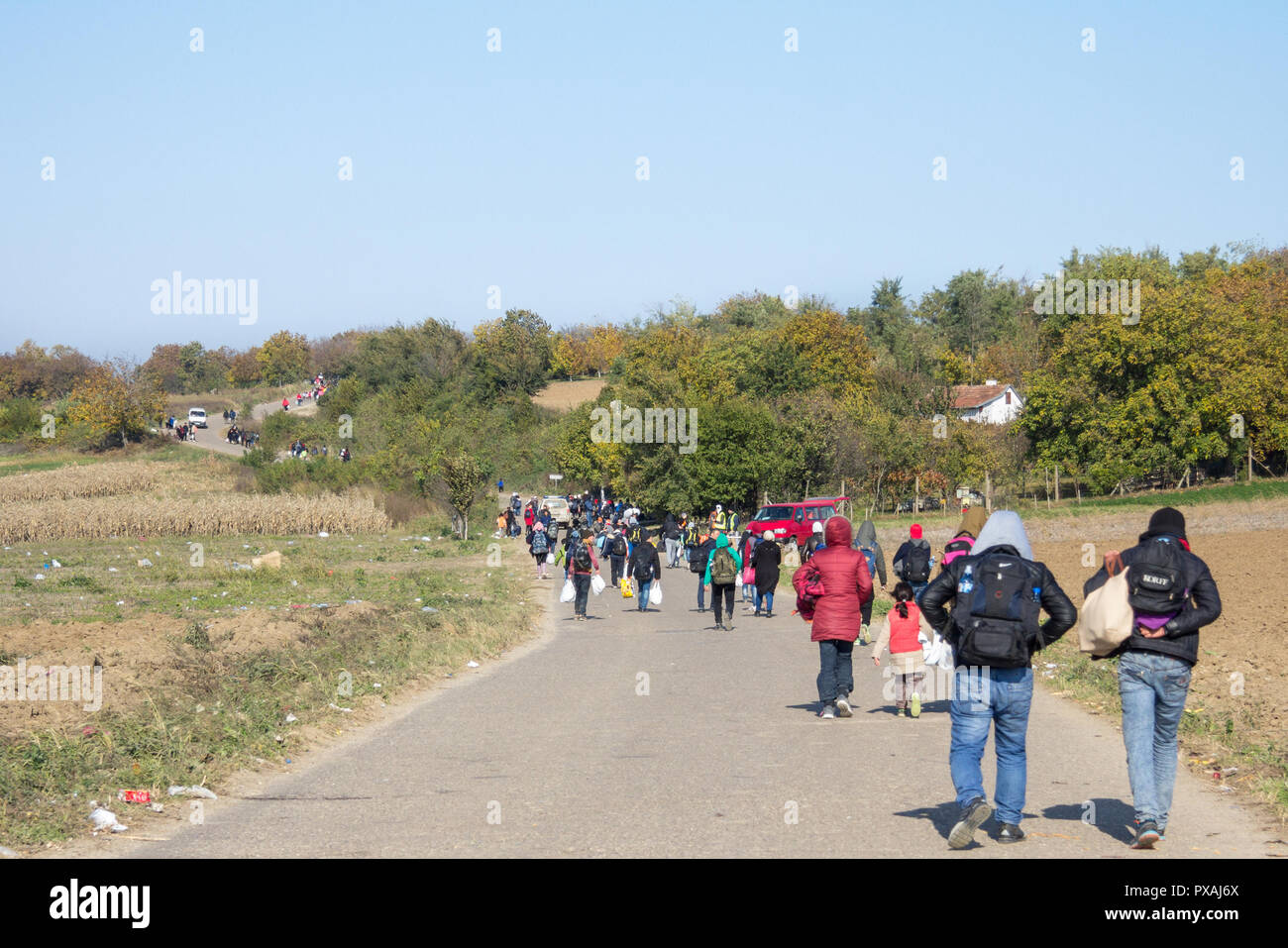BERKASOVO, SERBIA - OCTOBER 31, 2015: Refugees walking in column on a road on the way to the Croatia Serbia border, on the Balkans Route, during the R - Stock Image
