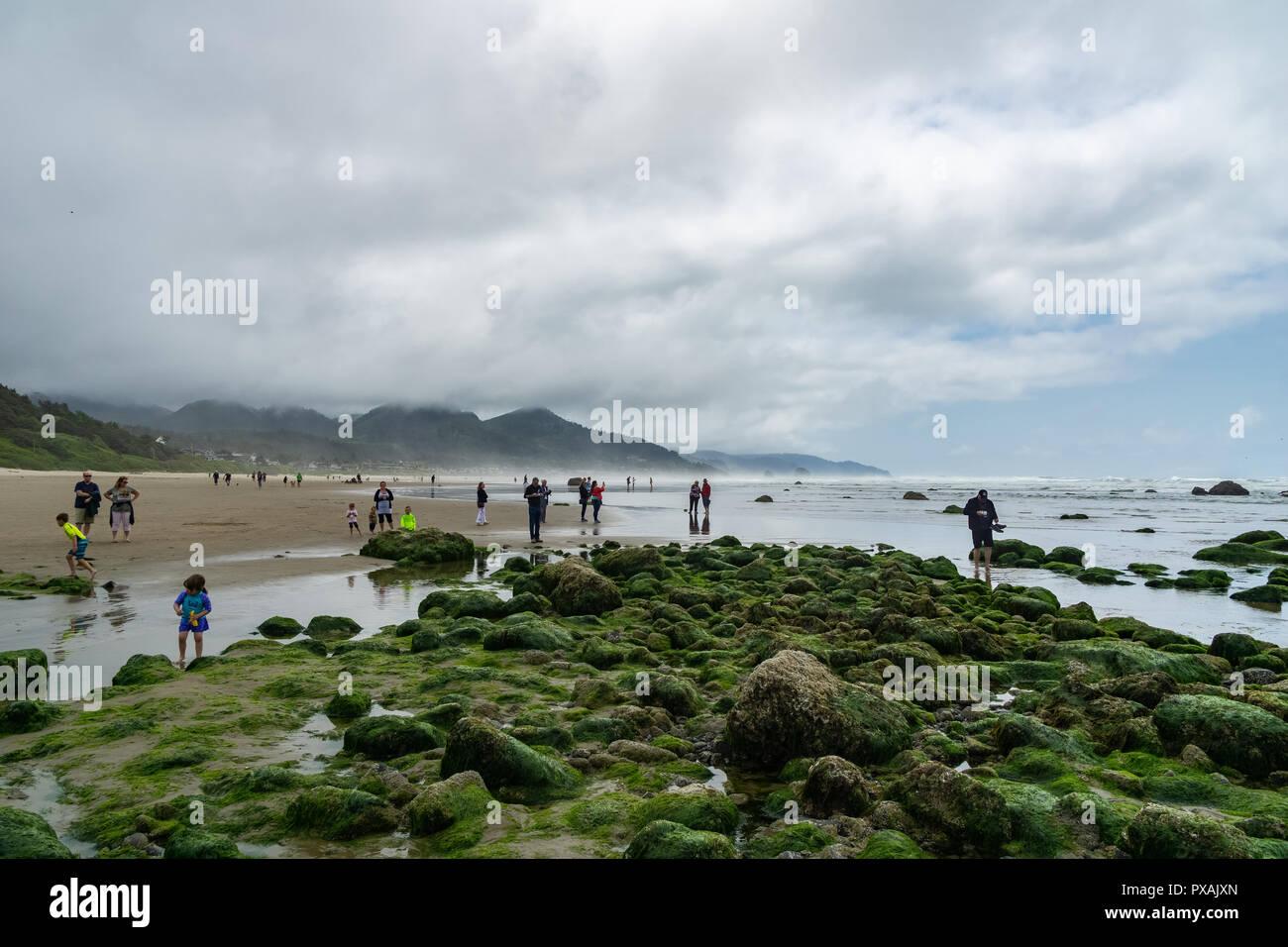 People or tourists enjoying Haystack Rock marine garden or tidepools at Cannon Beach, popular landmark of Oregon Coast, USA. - Stock Image