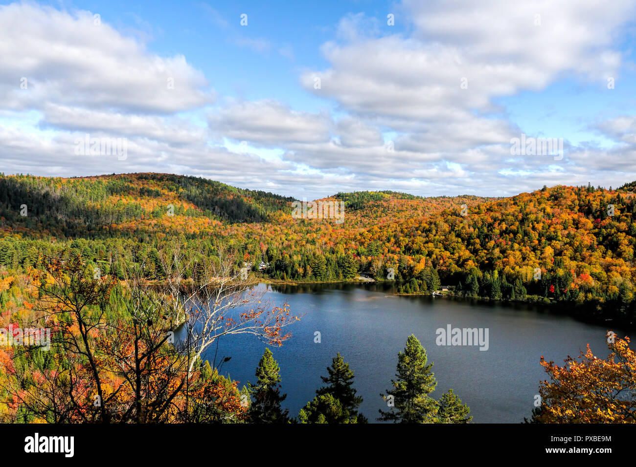 Overall view of a beautiful forest with lake and sky , Autumn, Canada, Mauricie - Stock Image