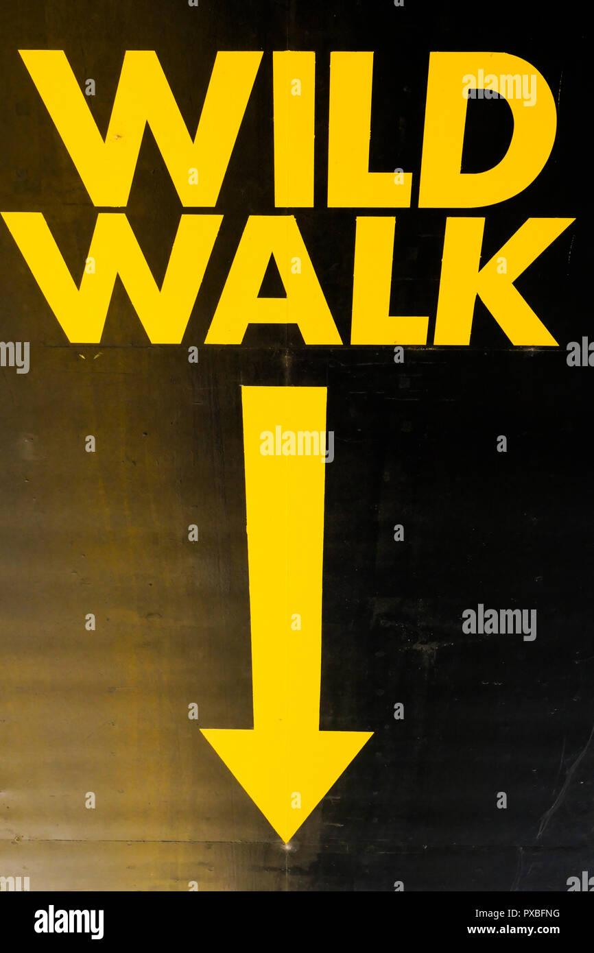 Wild walk, Yellow Street signs, Lyon, France - Stock Image