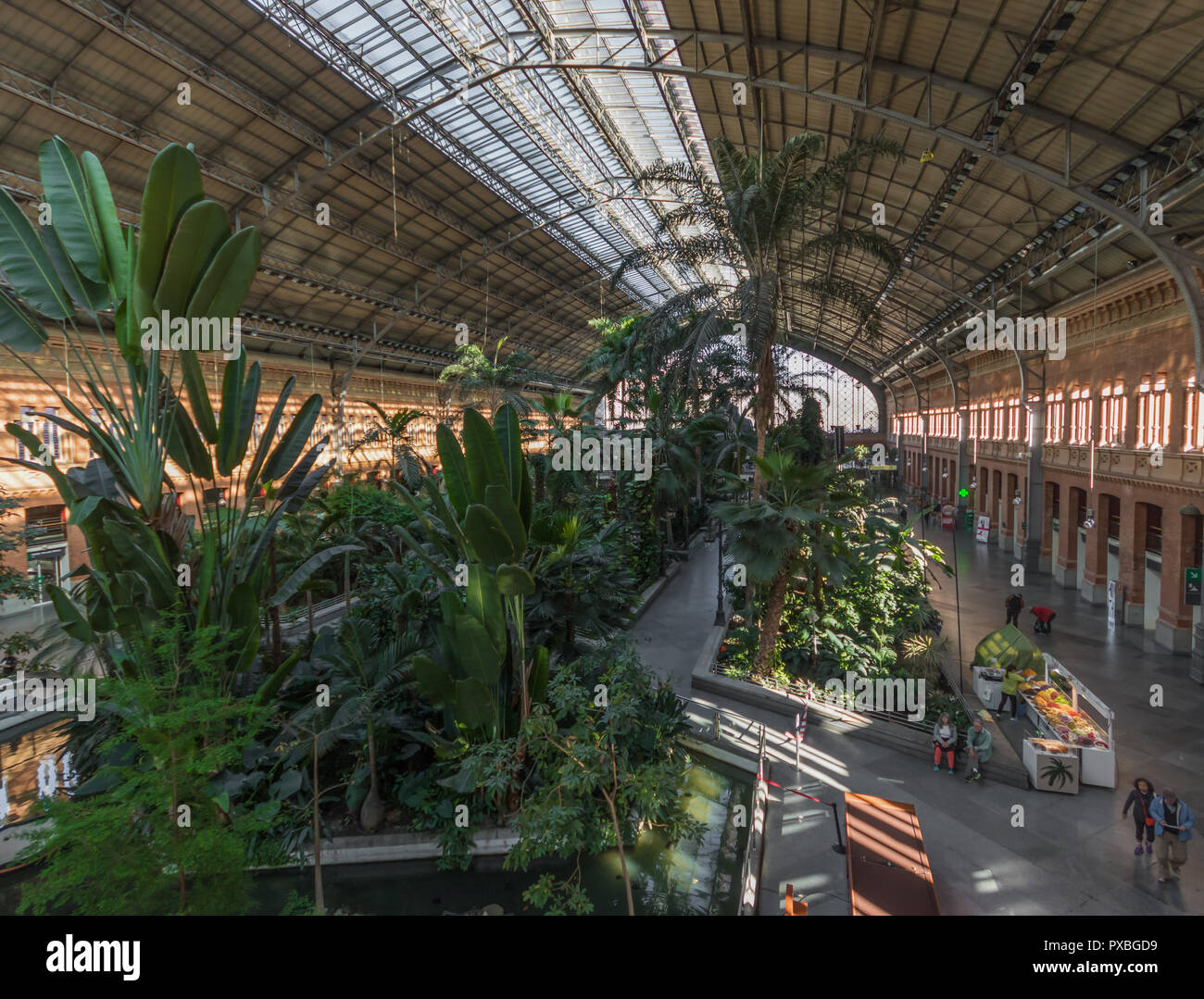 Devastated by the 2004 bombings, the Atocha Train Station, in Madrid, is today known for its inner tropical garden - Stock Image