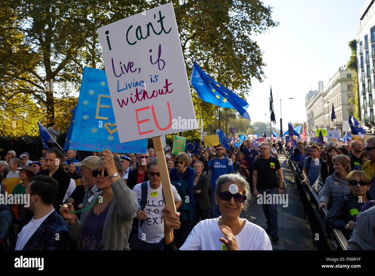 London, UK. 20th Oct, 2018. A placard held aloft at the People's Vote march through the centre of London. Credit: Kevin J. Frost/Alamy Live News Stock Photo
