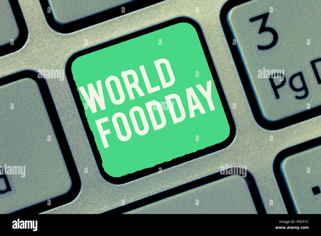 Text sign showing World Food Day. Conceptual photo World day of action dedicated to tackling global hunger. - Stock Image