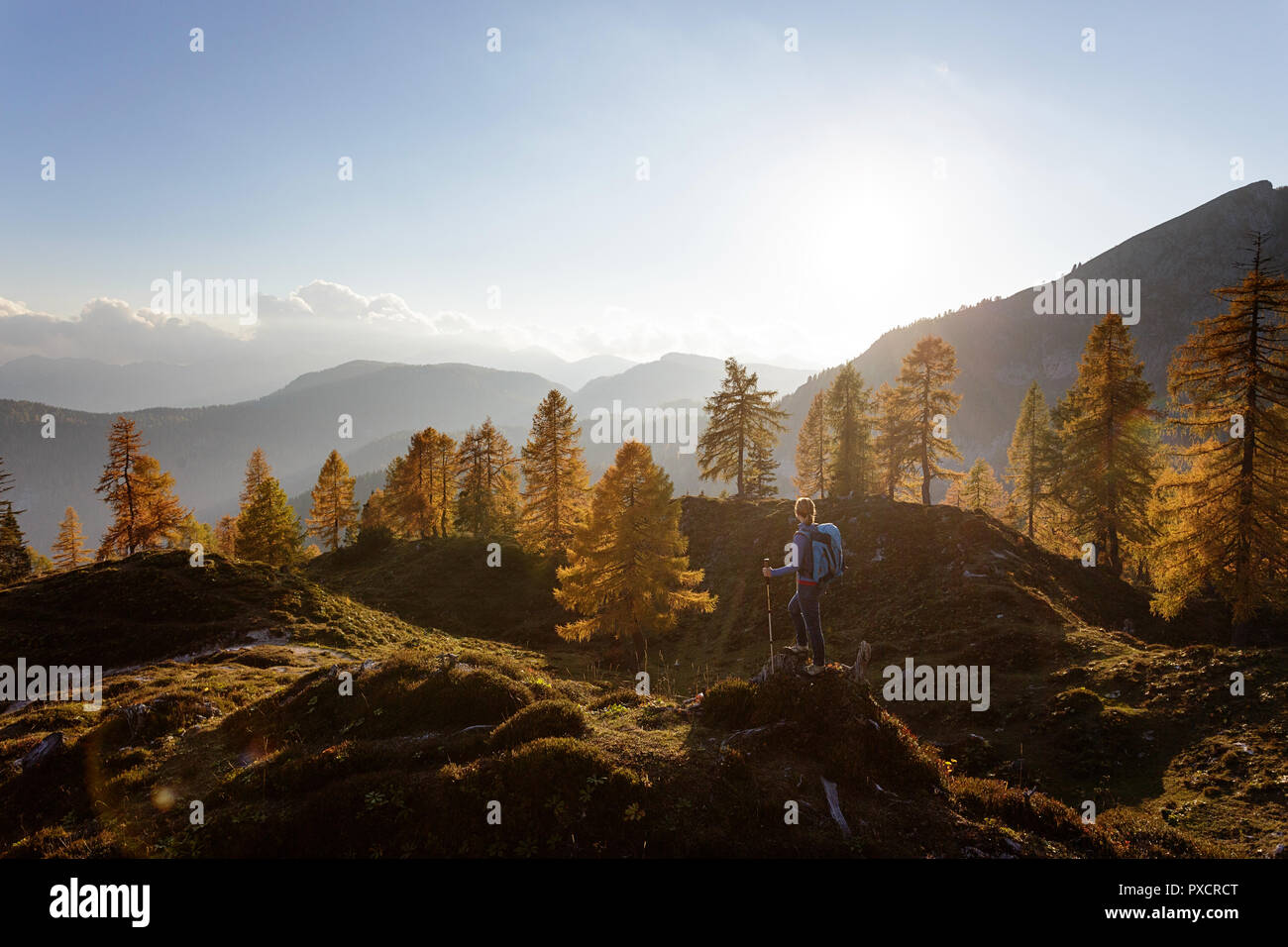 Woman standing on a hill at Krstenica meadow holding hiking sticks at golden light at sunset, Julian alps, Slovenia Stock Photo