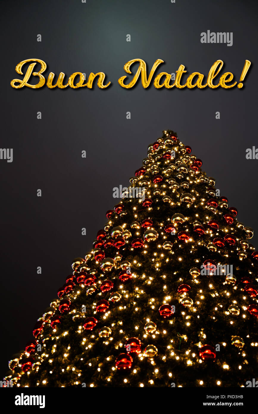 Merry Christmas In Italian.A Christmas Tree With Golden And Red Decoration The Italian
